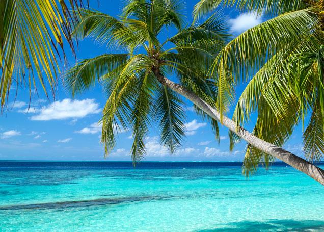 Fußboden Günstig Urlaub ~ Malediven reisen günstig buchen zum garantierten bestpreis auf